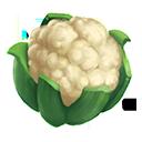 crop_general_cauliflower_generic_icon-1