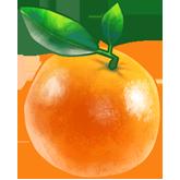ing_orange__9be66