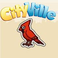oiseau-rouge-cityville