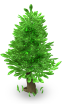 deco_evergreen_tree_A_SW