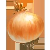 ing_onion__e9fe0